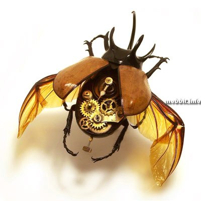 steampunk cyborg insects