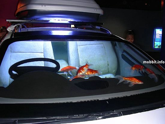 car-aquarium