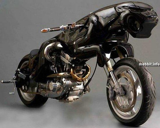 CAT 1 Über-bike