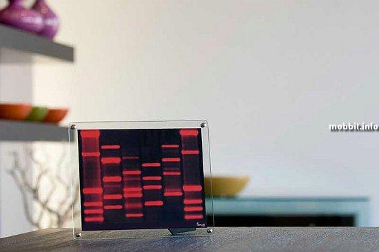 Портрет ДНК