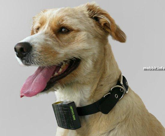 Dog Caller