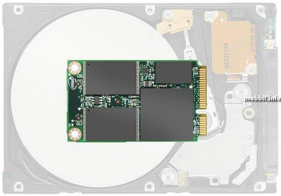 SSD mSATA 310