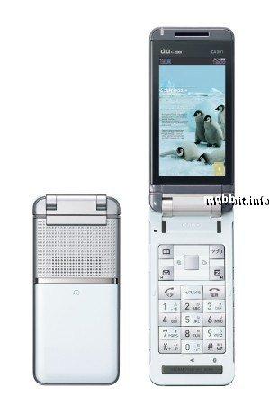Casio CA001