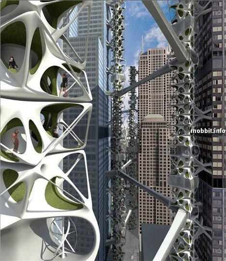 Park-skyscrape