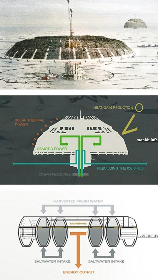 Polar Umbrella