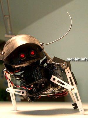 Swashbot