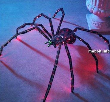 Twitching Spider