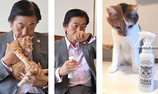 Крем для рук и духи с запахом… кота