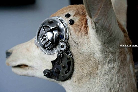 cyborg-animals