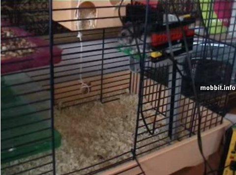 hamster-lift