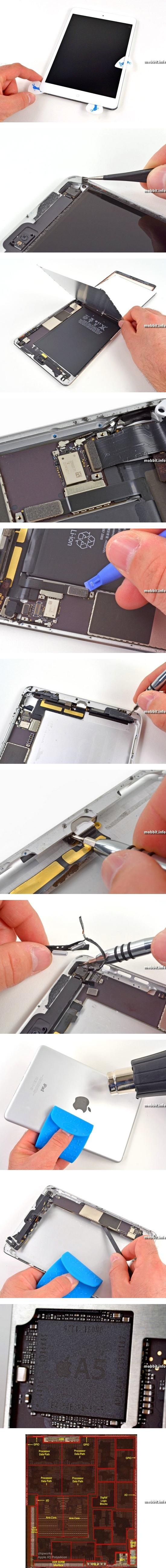 iPad mini разобран по частям