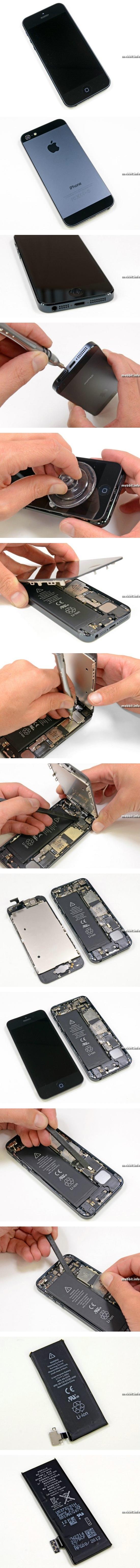 iPhone 5 разобран по частям