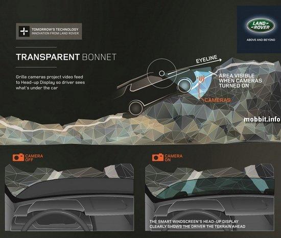 Transparent Bonnet