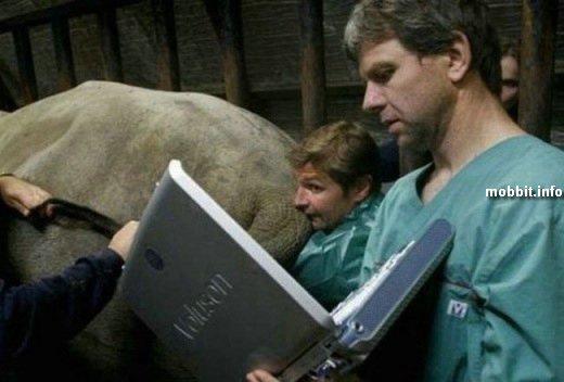 Ноутбуки в нестандартных ситуациях