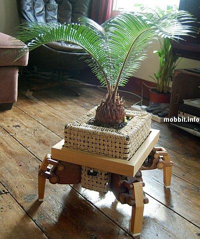 передвигающееся растение