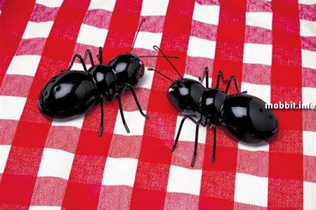 Солонка и перечница - муравьи