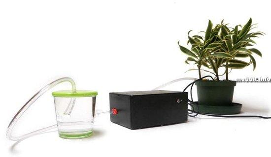 Теперь растения могут поливать себя сами