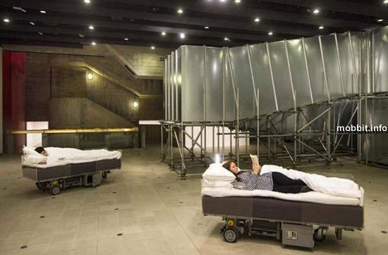 Two Roaming Beds