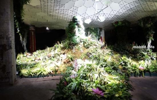 Underground Park